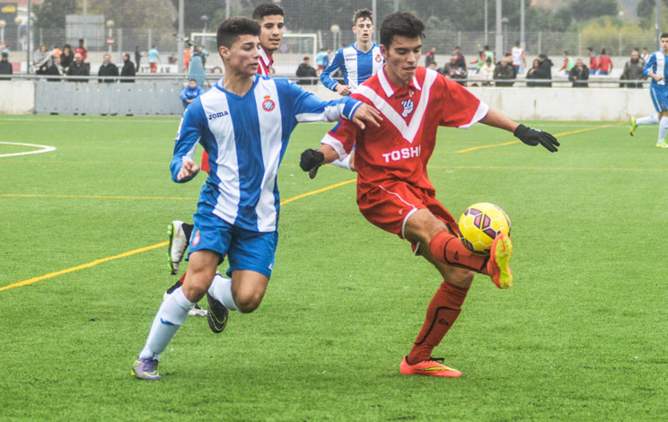 Click to enlarge image 151220-juvenil-01.jpg